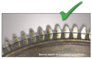 Barrel teeth in excellent condition.